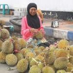 Durian di Mana-mana