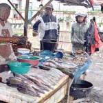 Cuaca Buruk, Harga Ikan Meroket