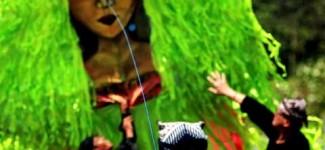 Ribuan Warga Saksikan Banyuwangi Kite Festival