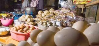 Harga Telur Kembali Meninggi
