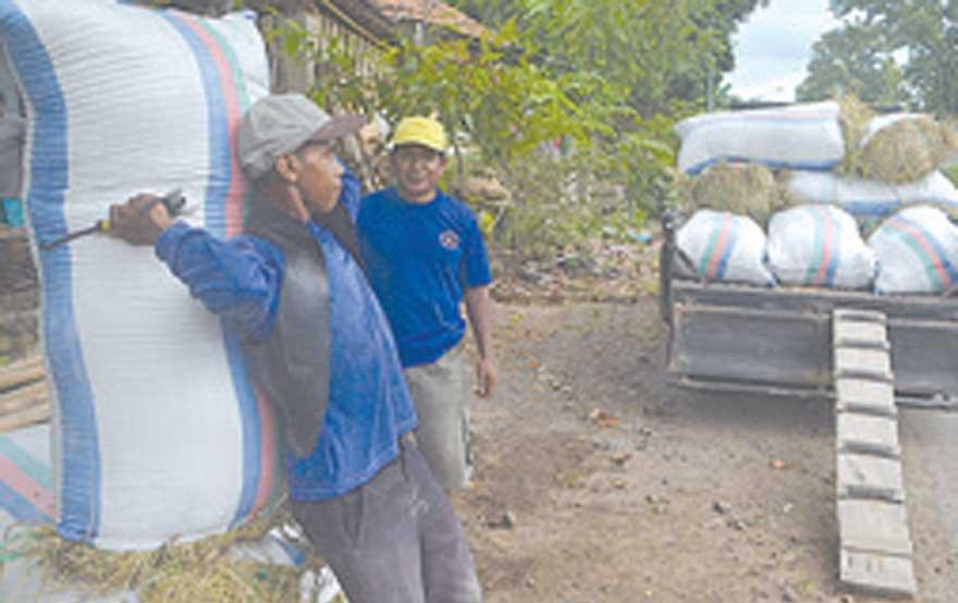 Buruh-memanggul-gabah-ke-kendaraan-di-Desa-Kepundungan,-Kecamatan-Srono,-kemarin.