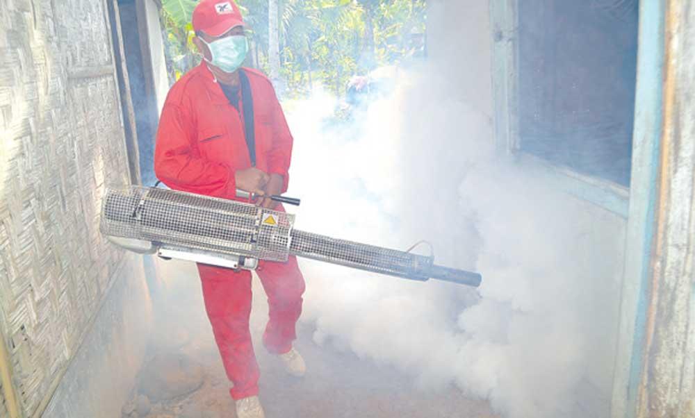 Petugas-Puskesmas-Gitik-melakukan-fogging-di-Dusun-Krajan,-Desa-Gitik,-Kecamatan-Rogojampi,-kemarin-pagi.